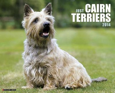 Cairn Terriers Wall Calendar book written by Not Available (NA)