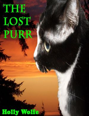 The Lost Purr written by Holly Wolfe