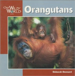 Orangutans book written by Deborah Dennard