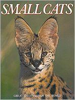 Small Cats book written by Susan Lumpkin