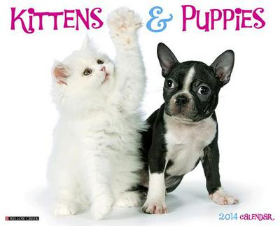 Kittens & Puppies Wall Calendar book written by Not Available (NA)