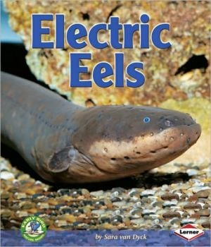 Electric Eels book written by Sara Van Dyck