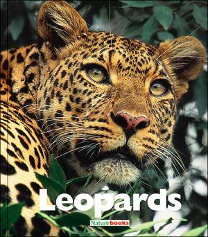 Leopards book written by Mary Ann McDonald