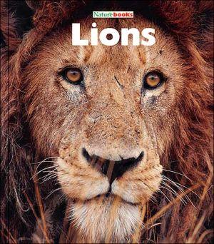 Lions book written by Sandra Lee