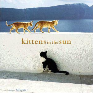 Kittens in the Sun book written by Hans Walter Silvester