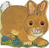 Pocket Pals 1 - Bunny book written by Michael Twinn