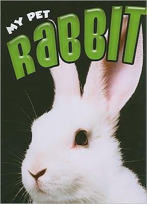 Rabbit book written by Jill Foran