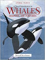 Whales : A Visual Introduction to Whales, Dolphins and Porpoises book written by Bernard Stonehouse, Martin Camm