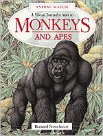 Monkeys and Apes : A Visual Introduction to Monkeys and Apes book written by Bernard Stonehouse, Martin Camm, Richard Orr