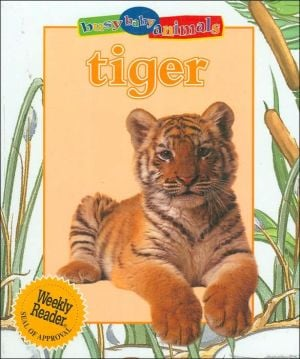 Tiger (Busy Baby Animals Series) written by Jinny Johnson