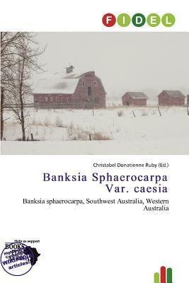 Banksia Sphaerocarpa Var. Caesia written by Christabel Donatienne Ruby