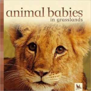 Animal Babies in Grasslands book written by Editors of Kingfisher