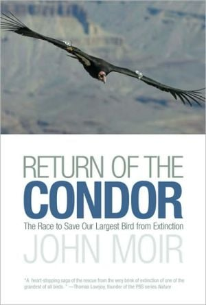 Return of the Condor: The Race to Save Our Largest Bird from Extinction book written by John Moir