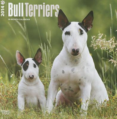 Bull Terriers 2014 Calendar 18-Month book written by Browntrout Publishers