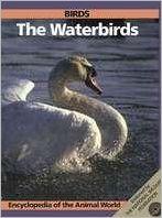 Birds: The Waterbirds book written by Robin Kerrod, Jill Bailey