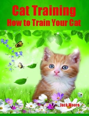Cat Training - How to Train Your Cat written by Jack Moore