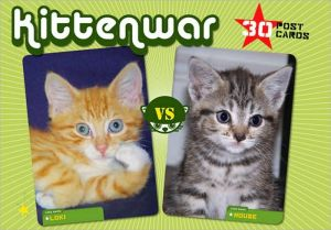 Kittenwar Postcard Box book written by Fraser Lewry