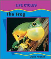 Frog book written by Diana Noonan