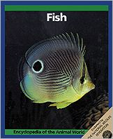 Fish book written by Linda Losito, Christopher O'Toole, Robin Kerrod, John Stidworthy