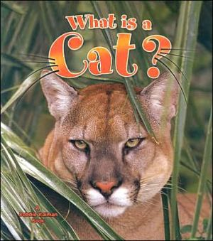 What Is a Cat? book written by Amanda Bishop