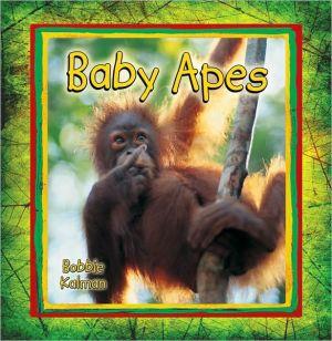 Baby Apes book written by Bobbie Kalman