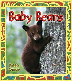 Baby Bears book written by Bobbie Kalman