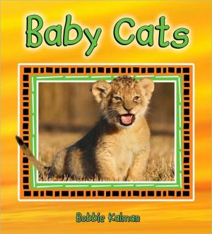 Baby Cats book written by Bobbie Kalman