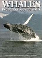 Whales, Dolphins and Porpoises book written by Richard Harrison, Michael Bryden