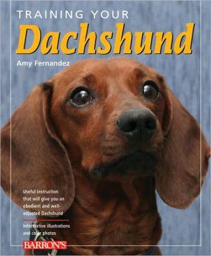 Training Your Dachshund book written by Amy Fernandez