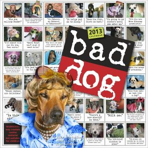 Bad Dog: 259 Outspoken, Indecent, and Overdressed Dogs written by R.D. Rosen