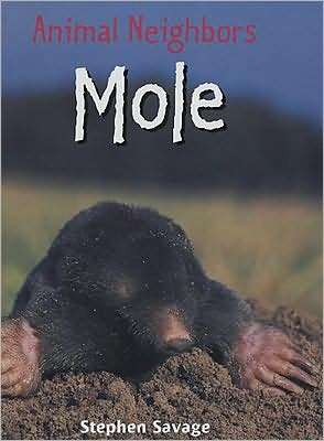 Mole book written by Stephen Savage