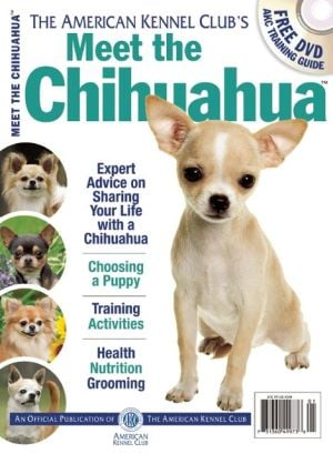 Meet the Chihuahua book written by American Kennel Club