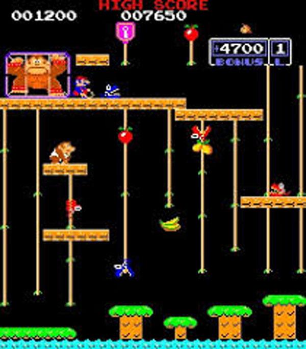 Donkey Kong Jr. Video Game Back Title by WonderClub