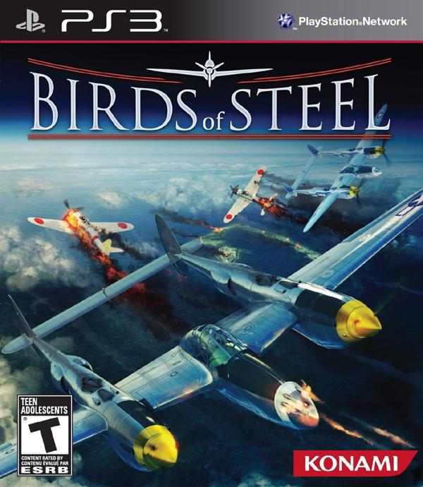 Birds Of Steel Video Game Back Title by WonderClub
